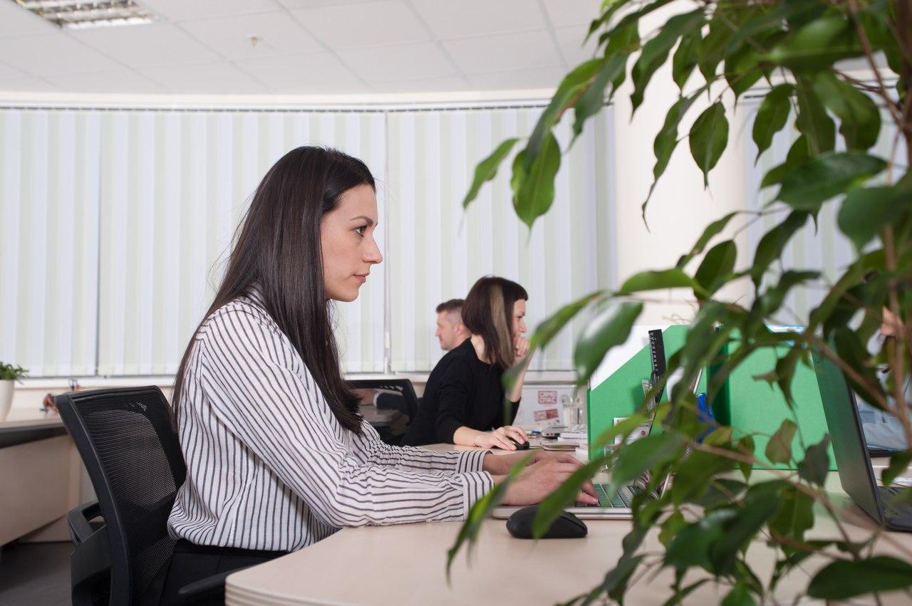 Франшиза бухгалтерское обслуживание работа бухгалтером в бюджетной организации в оренбурге